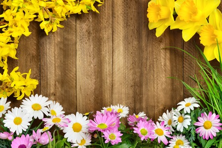 Photo pour Colorful spring flowers and fresh long grass frame a rustic wooden background, making perfect copyspace for your text - image libre de droit