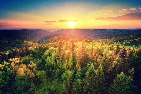 Photo pour Bird's-eye view of a scenic sunset over the   forest hills, with toned dramatic colors - image libre de droit