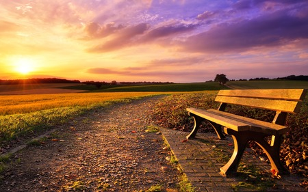 Photo for Colorful sunset scenery in rural landscape with a bench and a path in the foreground, gold fields and dramatic vivid sky in the background - Royalty Free Image