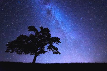 Foto de alone tree and milky way - Imagen libre de derechos