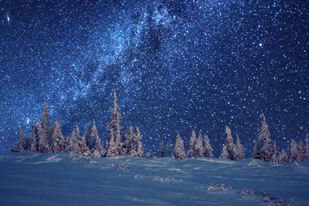 Photo pour winter forest and milky way - image libre de droit