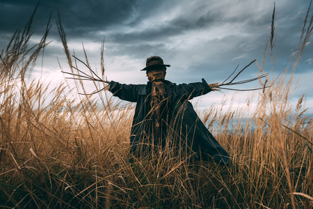 Photo for Scary scarecrow in a hat - Royalty Free Image