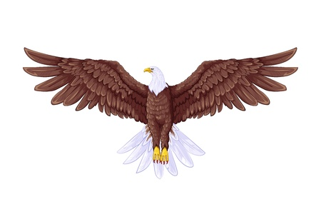 Illustration pour Flying Eagle - image libre de droit