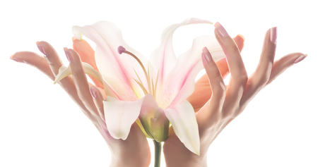 Photo pour Close-up image of beautiful woman's hands with light pink manicure on nails which is holding a Lily flower. Cream for hands and beauty treatment. Delicate Lily flower in elegant and graceful hands with slender and graceful fingers. - image libre de droit