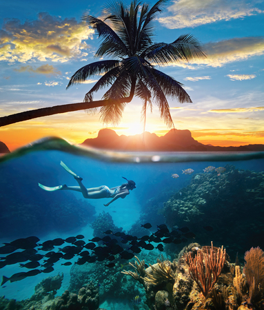 Photo pour Young woman snorkeling near the coral reef in the tropical Caribian sea on sunset day. - image libre de droit