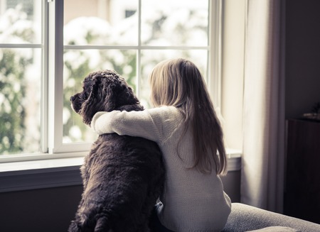 Photo for Little girl and her dog looking out the window. - Royalty Free Image