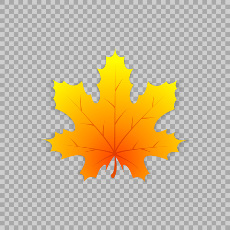 Ilustración de Maple leaf in a realistic style on transparent background, isolated object. - Imagen libre de derechos