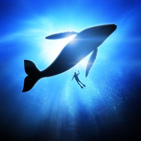 Foto de Deep under the ocean, looking up towards a Diver and Humpback Whale. - Imagen libre de derechos