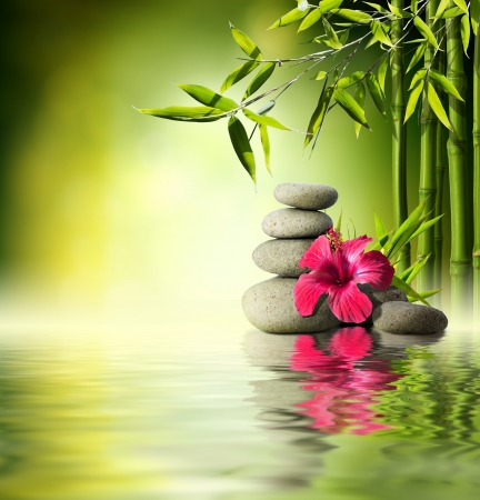 Foto de Stones, red hibiscus and Bamboo on the water - Imagen libre de derechos