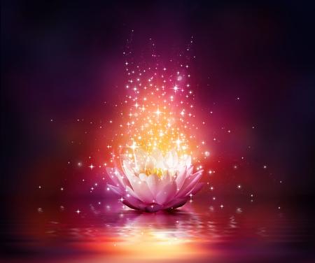 Photo pour magic flower on water  - image libre de droit