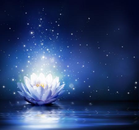 Photo pour magic flower on water - blue  - image libre de droit