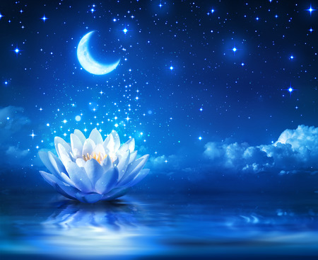 Foto de waterlily and moon in starry night - magic background - Imagen libre de derechos