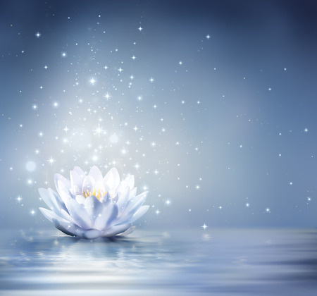 Photo for waterlily light blue on water - fairytale background - Royalty Free Image