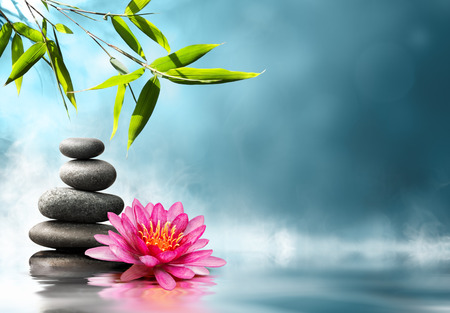 Foto de waterlily with stones and bamboo - Imagen libre de derechos