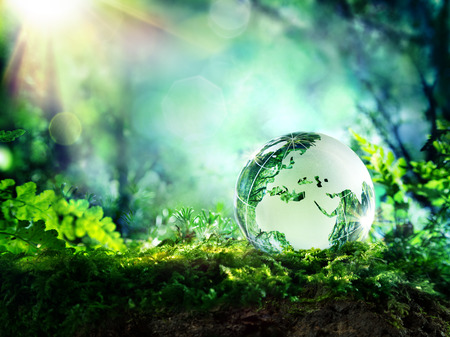 Photo pour globe on moss in a forest - Europe - environment concept - image libre de droit