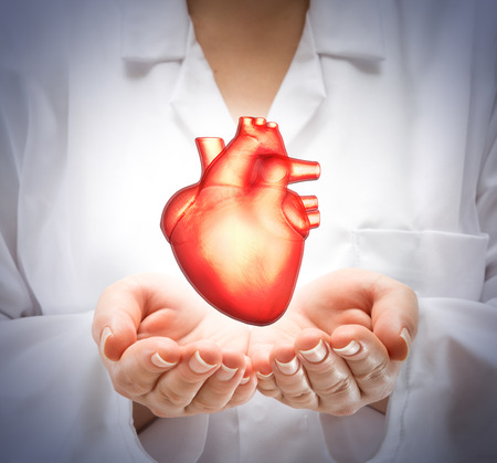 Photo pour woman doctor showing heart - image libre de droit