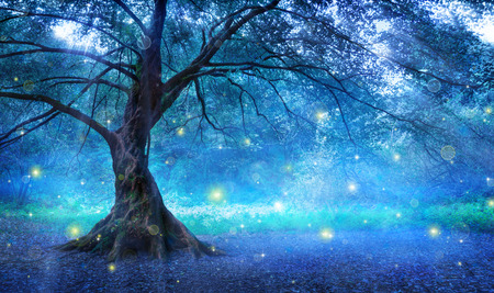 Photo for Fairy Tree In Mystic Forest - Royalty Free Image