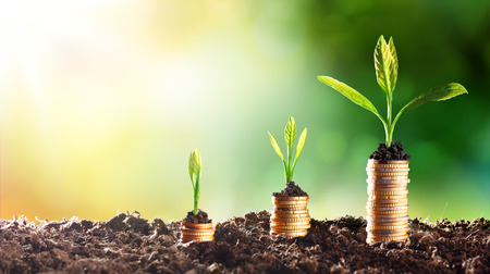 Photo for Growing Money - Chart In Rise - Royalty Free Image