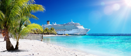 Foto de Cruise To Caribbean With Palm tree On Coral Beach - Imagen libre de derechos