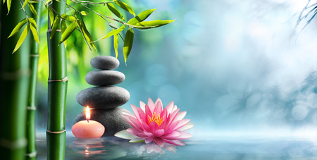 Photo for Spa - Natural Alternative Therapy With Massage Stones And Waterlily In Water - Royalty Free Image