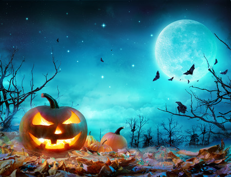 Foto de Pumpkin Glowing At Moonlight In The Spooky Forest - Halloween Scene - Imagen libre de derechos