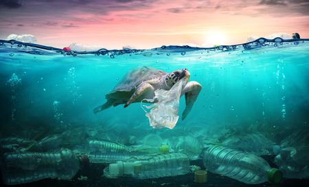 Foto de Plastic Pollution In Ocean - Turtle Eat Plastic Bag - Environmental Problem - Imagen libre de derechos