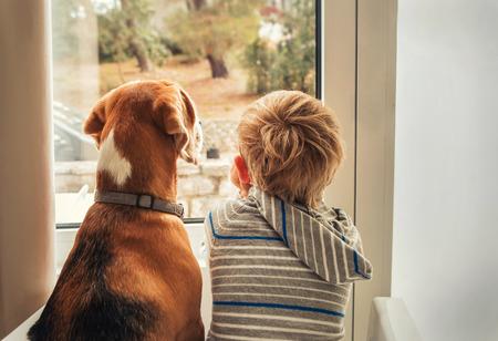 Photo pour little boy with best friend looking through window  - image libre de droit