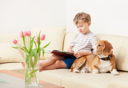 Photo pour Reading boy with beagle on sofa in cozy home - image libre de droit