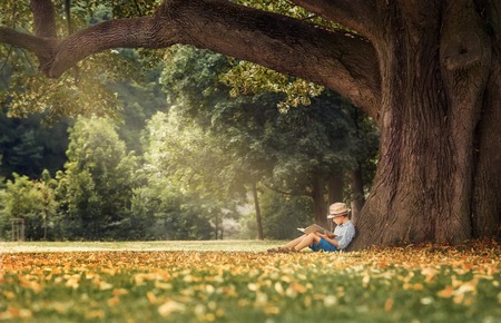 Photo pour Little boy reading a book under big linden tree - image libre de droit