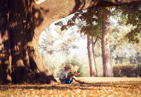 Foto de Golden afternoon dream. Boy reading book under big tree - Imagen libre de derechos