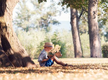 Foto de Boy read a book in tree shadow in sunny day - Imagen libre de derechos