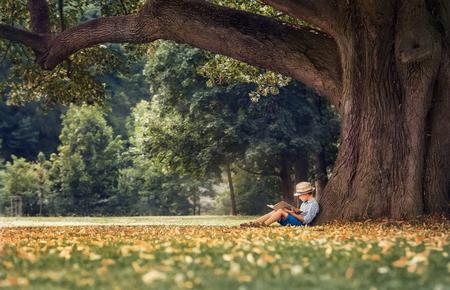 Foto de Little boy reading a book under big linden tree - Imagen libre de derechos