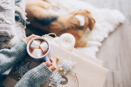 Photo pour Woman hands with cup of hot chocolate close up image; cozy home; sleeping dog; christmas time - image libre de droit