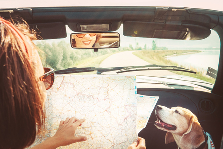 Foto de Woman traveling with her beagle dog by cabriolet car and planning itinerary using the paper map in the bright sunny day - Imagen libre de derechos