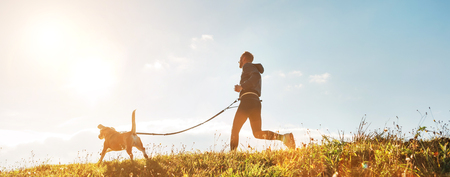 Photo pour Canicross exercises. Man runs with his beagle dog at sunny morning - image libre de droit