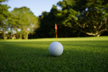 Photo pour Golf ball on green in beautiful golf course at sunset background. - image libre de droit