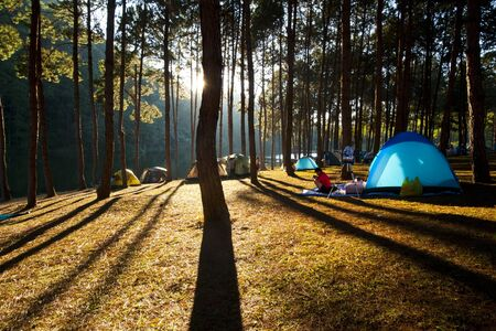 Illuminated blue Camping tent from sunlight with silhouette trees in outdoor