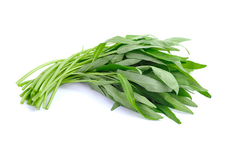 Foto de Fresh Water spinach isolated on white background - Imagen libre de derechos