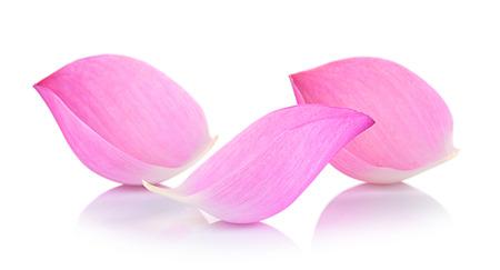 Photo pour Closeup on lotus petal on white background - image libre de droit