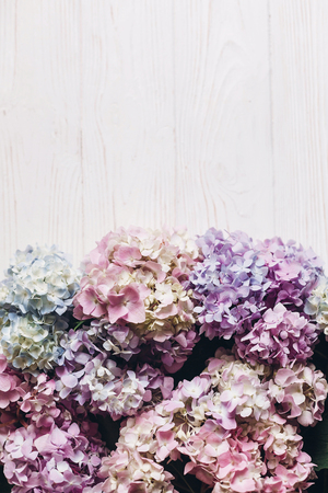 Photo for Beautiful hydrangea flowers on rustic white wood, flat lay. Colorful pink,blue,green,white border of hydrangea, greeting card with space for text. Hello spring. Happy mothers day. Women day - Royalty Free Image