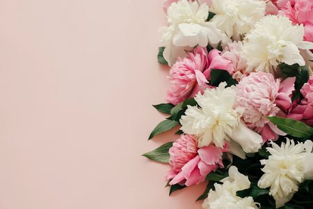 Photo for Pink and white peonies on pastel pink paper with space for text. Hello spring. Happy mothers day, floral greeting card mockup. International Womens Day. Stylish girly image - Royalty Free Image