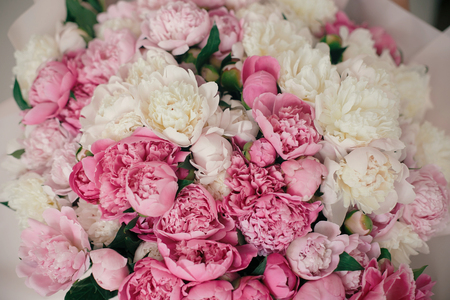 Photo for Peonies wallpaper pattern. Big stylish pink and white peony bouquet close up. Happy mothers day. Valentines day. Aroma scent concept. International Womens Day. - Royalty Free Image