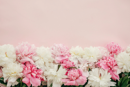 Photo for Stylish peonies flat lay. Pink and white peonies border on pastel pink paper with space for text. Happy mothers day, floral greeting card mockup. International Womens Day. Valentines day. - Royalty Free Image
