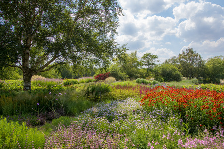 Photo pour Summer country garden landscape. Colorful picturesque horticulture scene with beautiful flowers, gree trees and plants. The art of gardening. - image libre de droit