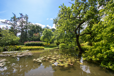 Photo for Idyllic picturesque English countryside landscape. Beautiful pond on a summers day. Lush green foliage and still water with fish and lilly pads. Gorgeous trees and garden flowers. - Royalty Free Image