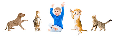 Group of a cheerful pets and kid together isolated on white background
