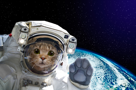Photo pour Cat astronaut in space on background of the globe. Elements of this image furnished by NASA. - image libre de droit