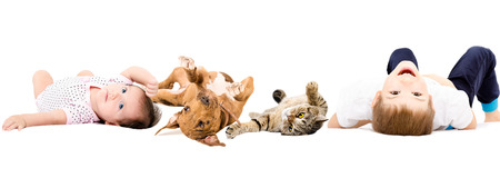 Group of happy children and pets, lying isolated on white background