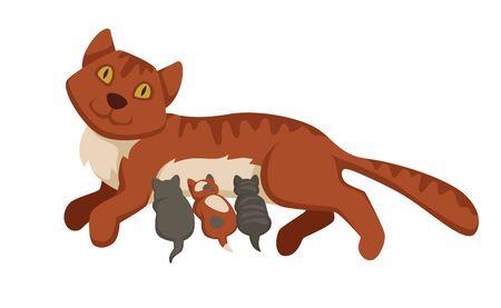 Illustrazione per Pet cat feeding or nursing kittens babies vector cartoon icon - Immagini Royalty Free