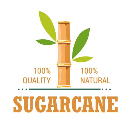 Illustration for Natural organic product sugarcane isolated icon plantation - Royalty Free Image